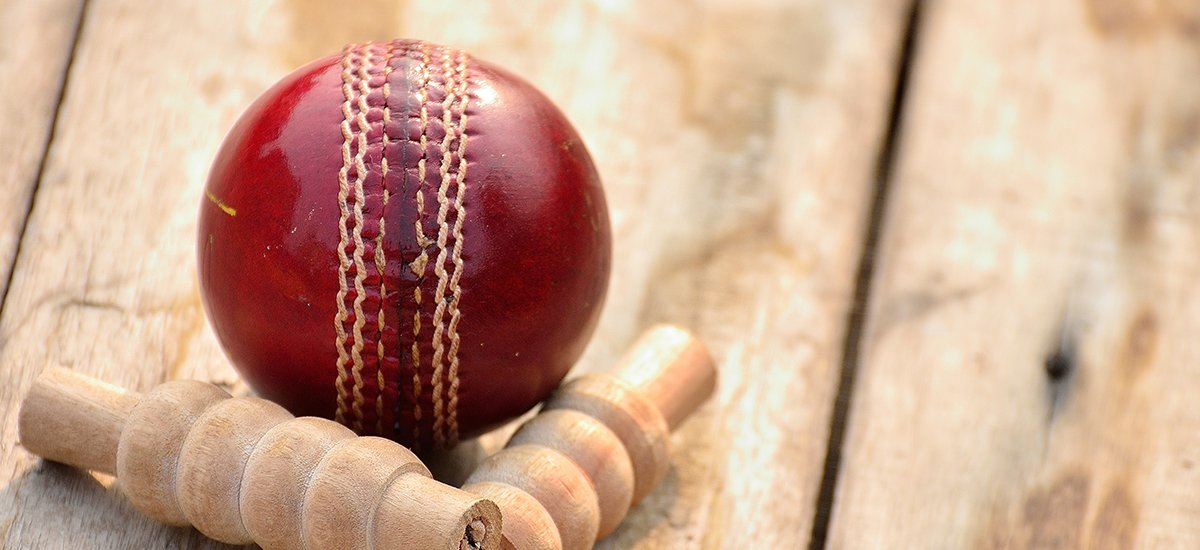 cricket wicket and ball
