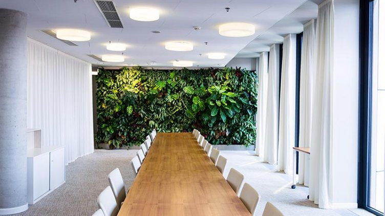 Living green wall, vertical garden indoors with flowers and plants under artificial lighting in meeting boardroom